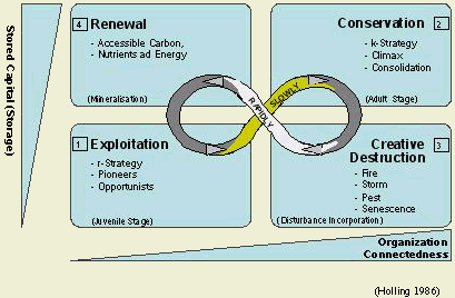 Holling's fundamental model of ecosystem dynamics
