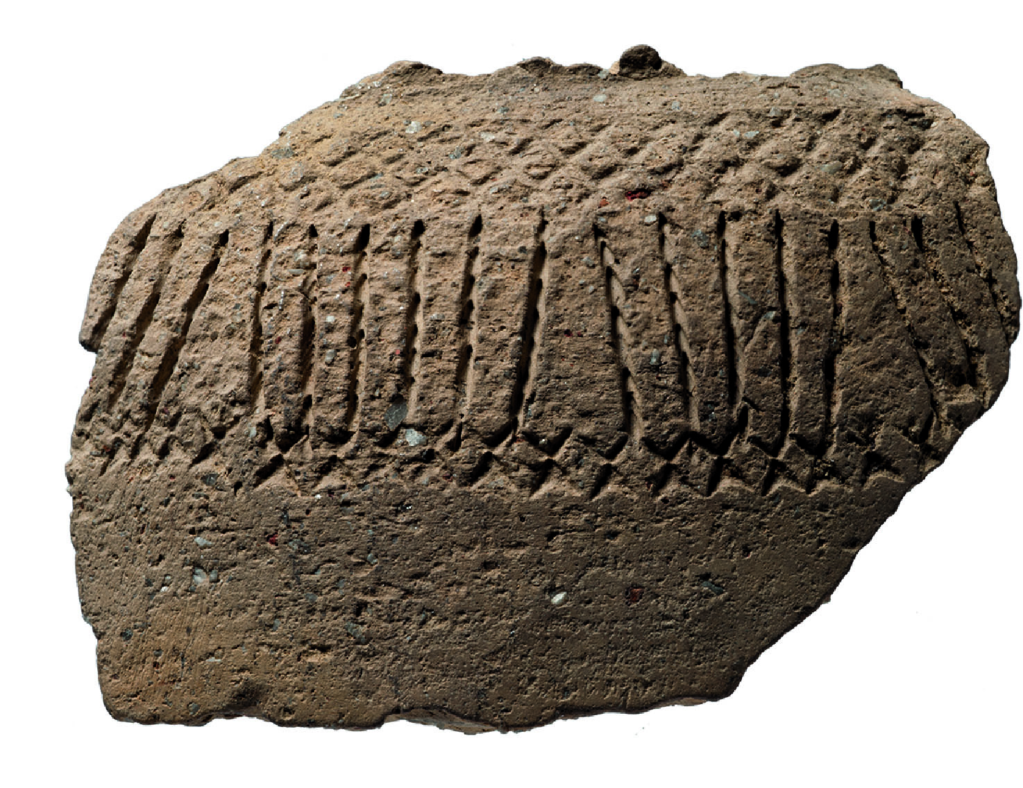 Sherd of an amphora