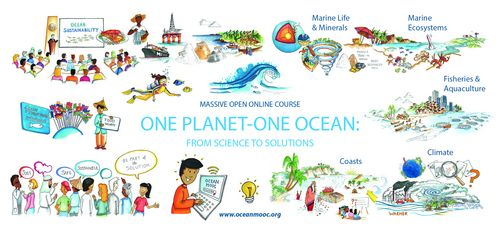 Plakat: Massive Open Online Course. One Planet-One Ocean: From Science to Solutions. www.oceanmooc.org