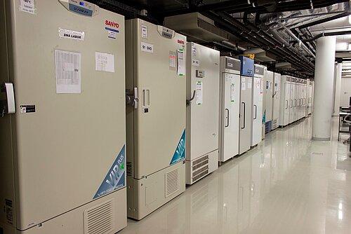 Uni Kiel: Datenspende für die medizinische Forschung