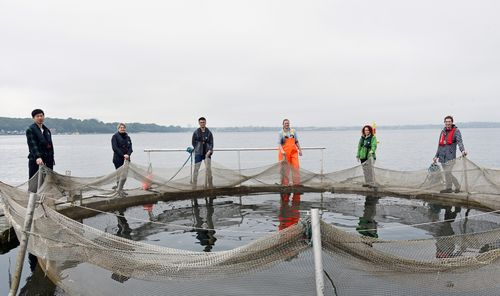 Six persons around a fish cage in the water