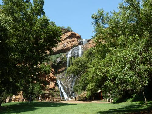 Walter Sisulu National Botanical Garden in Südafrika