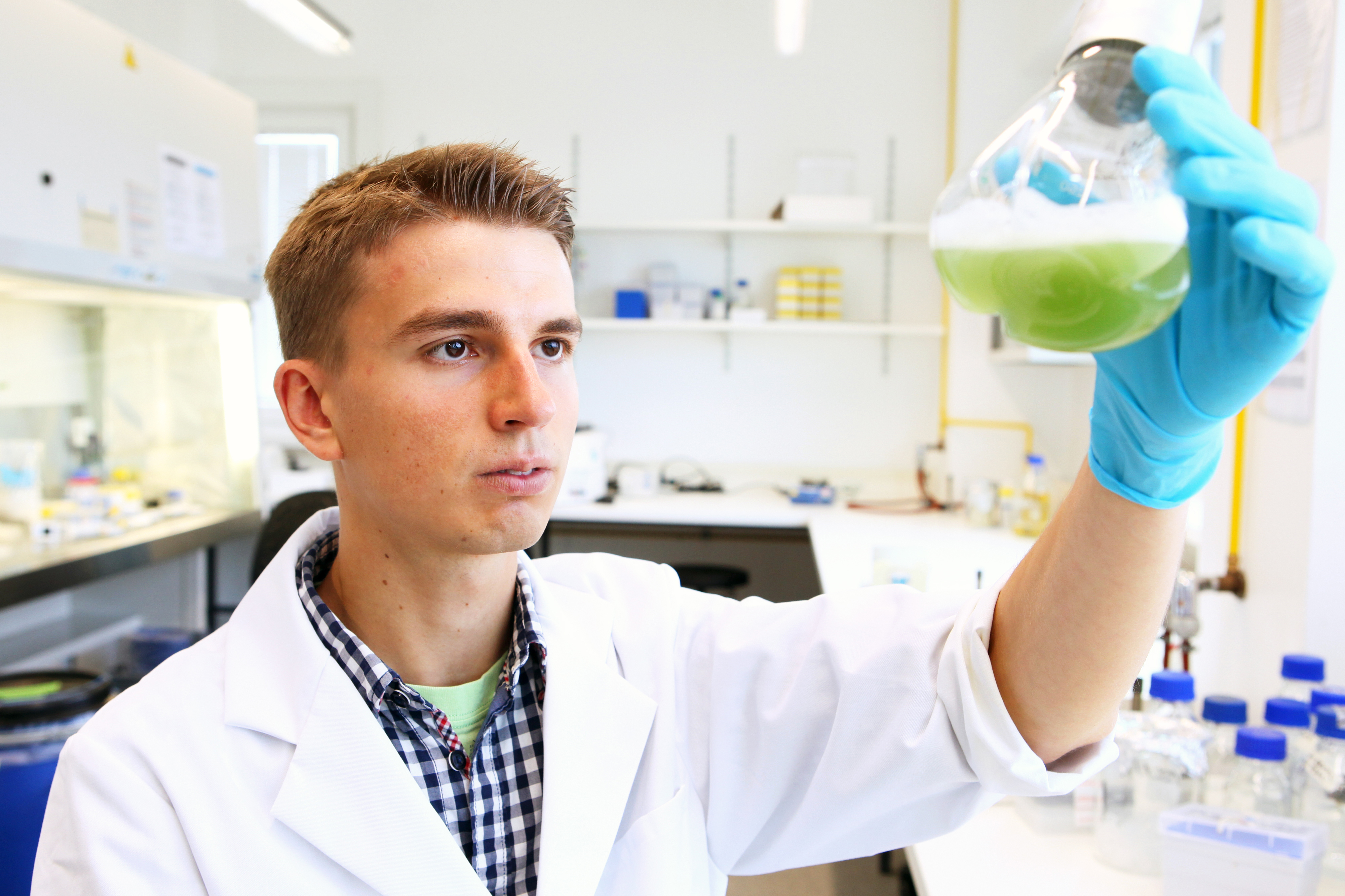 A man observes bacteria in a glass container